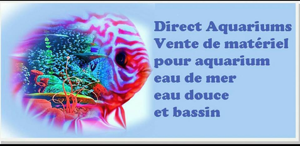 direct-aquarium