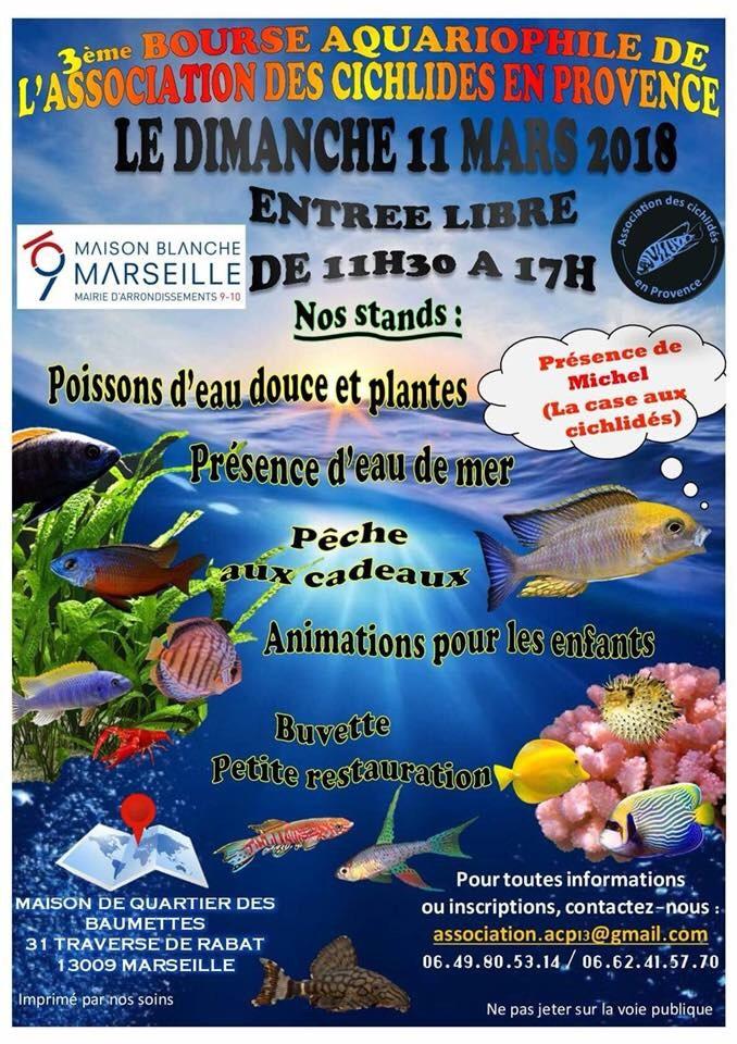 3eme bourse aquariophile de L'acp  IMG_2183-1